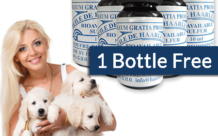 20 Bottles of 10ml for Pets