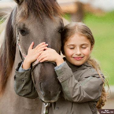 Horse Health Care Guide